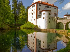 8325988911 1024x1024 266x200 - Notranjska, zeleno srce Slovenije