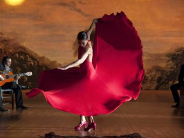 flamenco 266x200 - Turistična ponudba