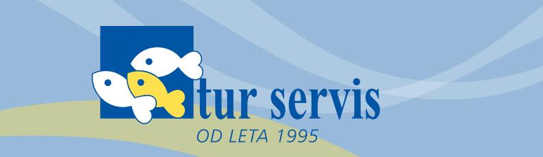 logotip_tur_servis3