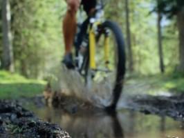 kolesarjenje rogla 266x200 - Turistična ponudba