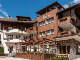 hotel adler 266x200 - Italija