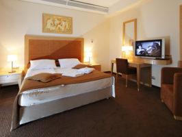 grand hotel primus 03 266x200 - DOMOV